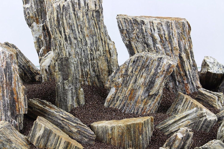 Pierre de 3 kg imitation bois pour aquarium de style iwagumi TM Aquatix