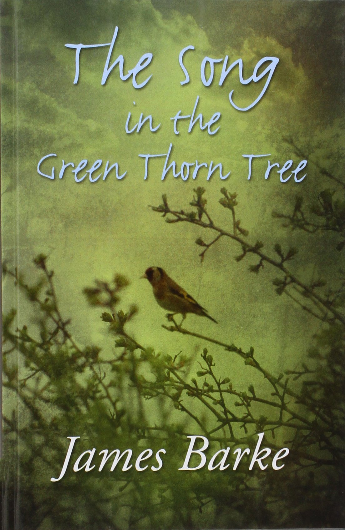 The Song In The Green Thorn Tree PDF