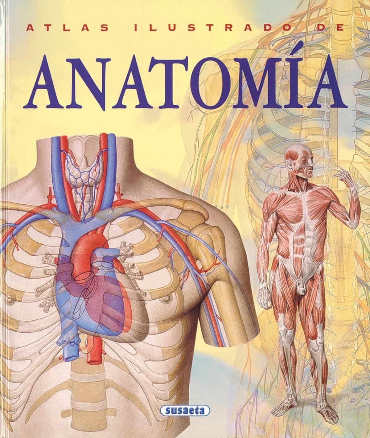 Atlas Ilustrado De Anatomia (Tapa Dura): Amazon.es: ADRIANA BIGUTTI ...