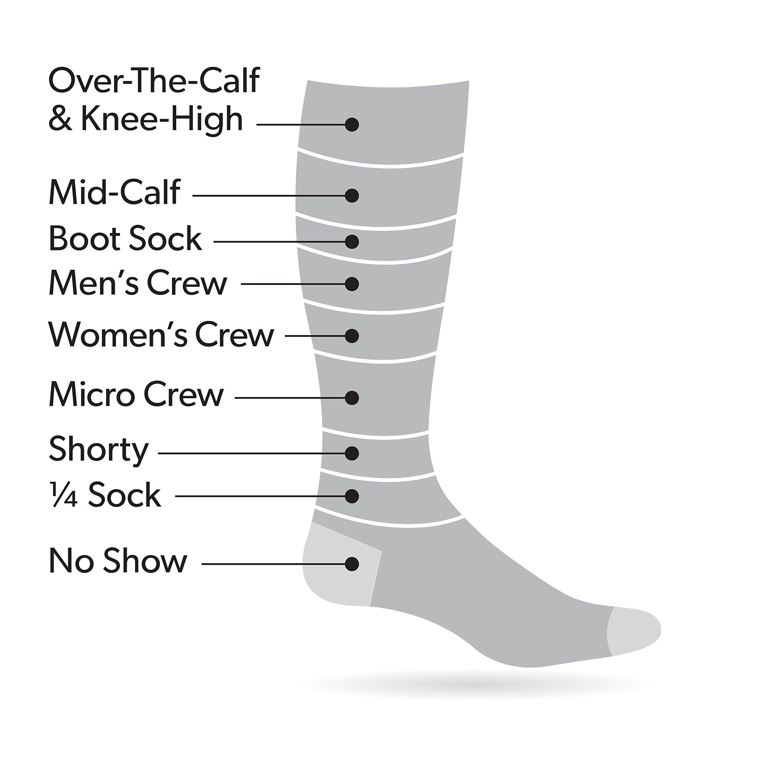 e6c2b3132 Darn Tough Men s Merino Wool Micro Crew Cushion Sock (Style 1466) – 6 Pack  ...