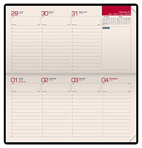 Amazon.com : Oxford 100735449 Look Diary Calendar Planner ...