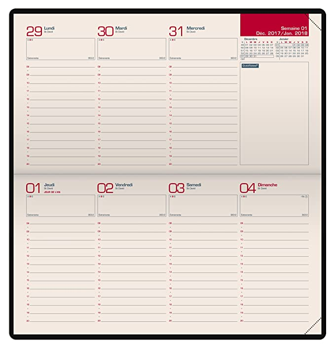 Amazon.com : Oxford 100735449 Look Diary Calendar Planner ...