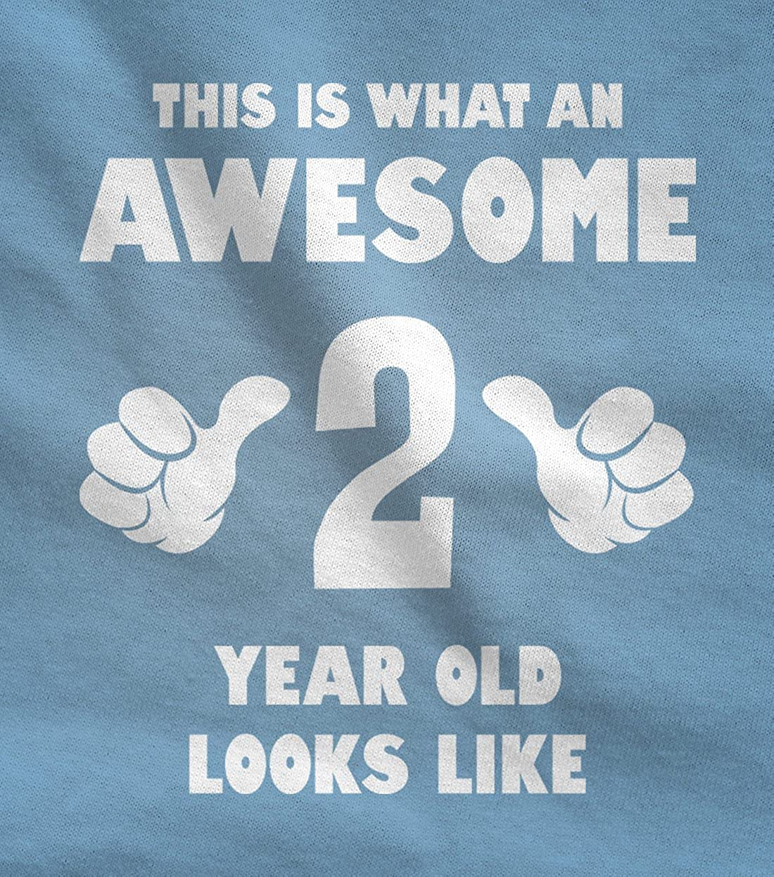 TeeStars This is What an Awesome 2 Year Old Looks Like Funny Toddler Hoodie