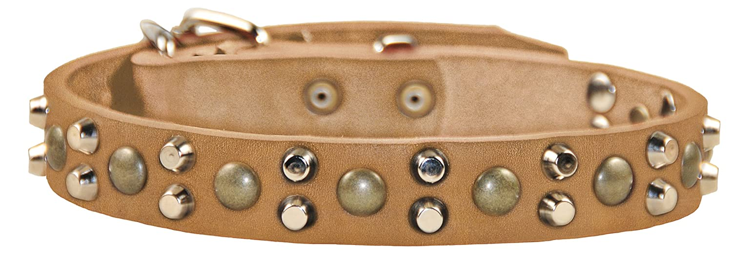 Dean and Tyler BUMPS and BITS , Dog Collar with Capped Rivets and Chrome Plated Steel Hardware Tan Size 18  by 1-1 5  Fits Neck 16  to 20
