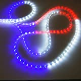 Amazon holiday time 18 clear crystallized rope light by russell decor 200 outdoor led decoration rope lights kit included red blue white aloadofball Gallery