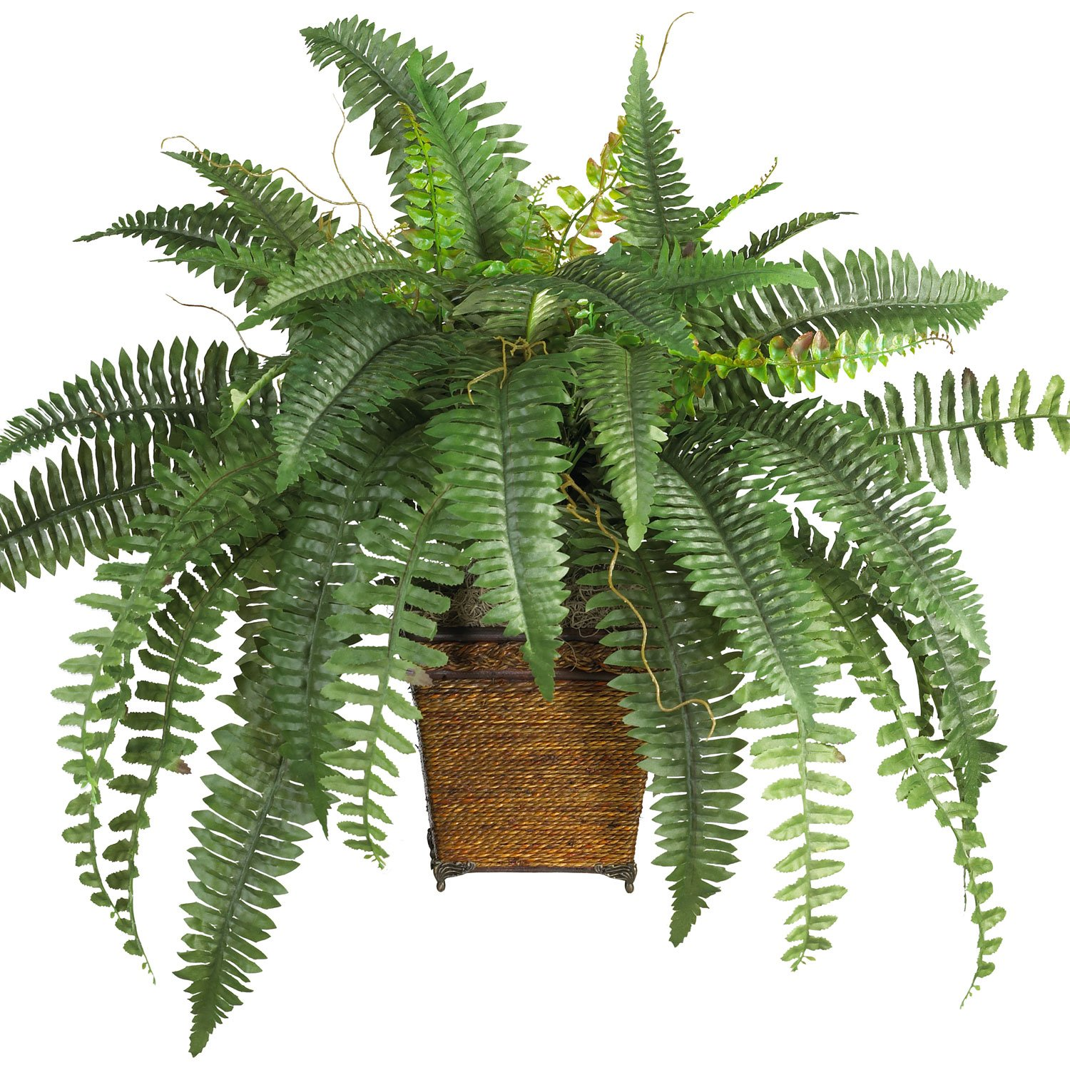 amazoncom nearly natural 6549 boston fern with wicker decorative silk plant green home kitchen artificial plants for office decor