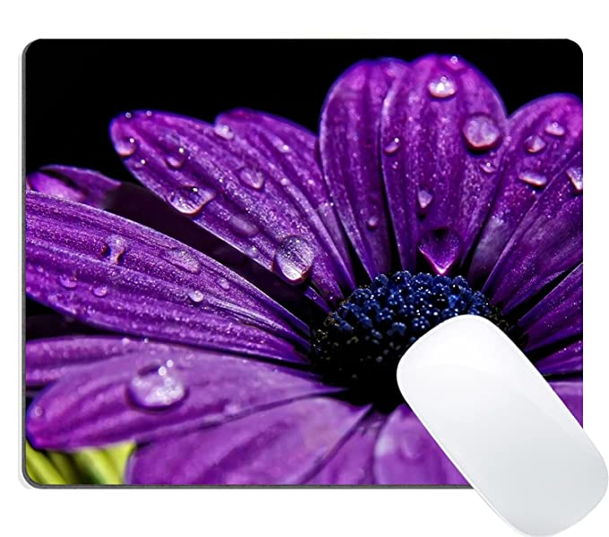 Wknoon Purple Daisy Flower Mouse Pad by Wknoon