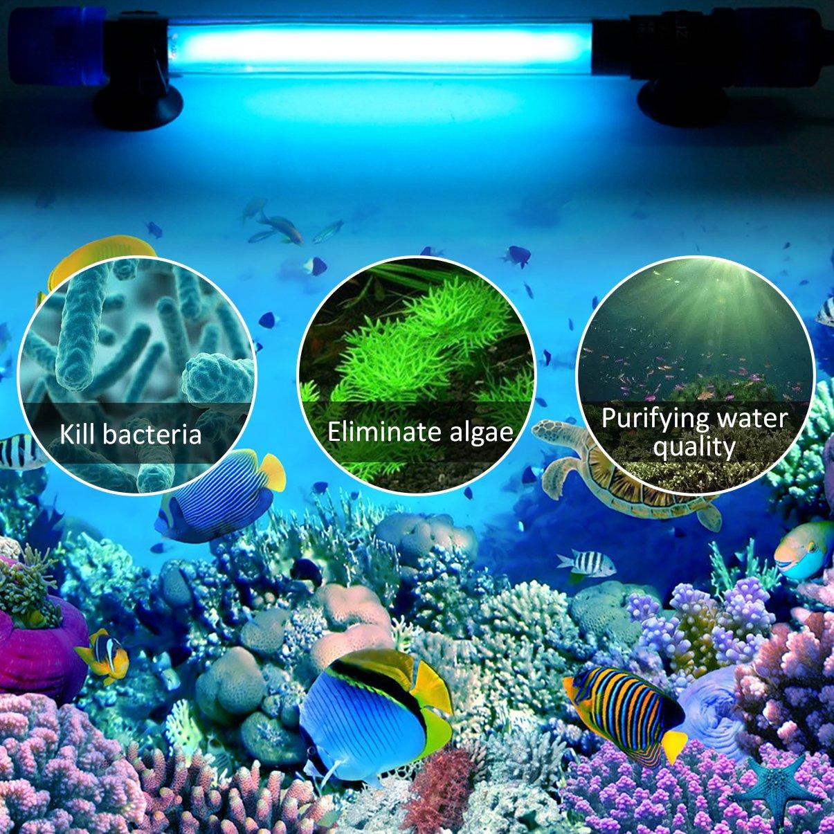 LEDGLE 7W Sterilizzatore per acquario UV acquario piscine lampada UV Luce sommergibile per distruzione di alghe per acquari