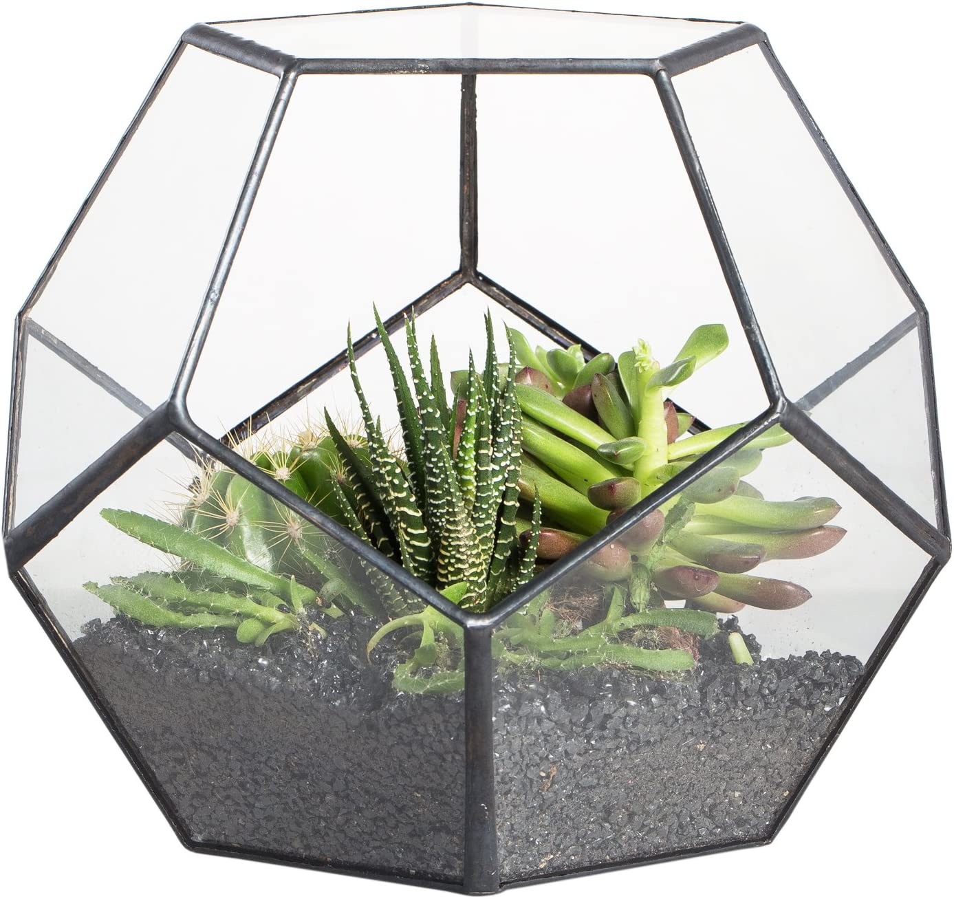 Black Glass Geometric Terrarium Container Modern Tabletop Window Sill Decor Flower Pot Balcony Planter Diy Display Box for Succulent Fern Moss Air Plants Miniature Fairy Garden Gift (No Plants): Garden & Outdoor