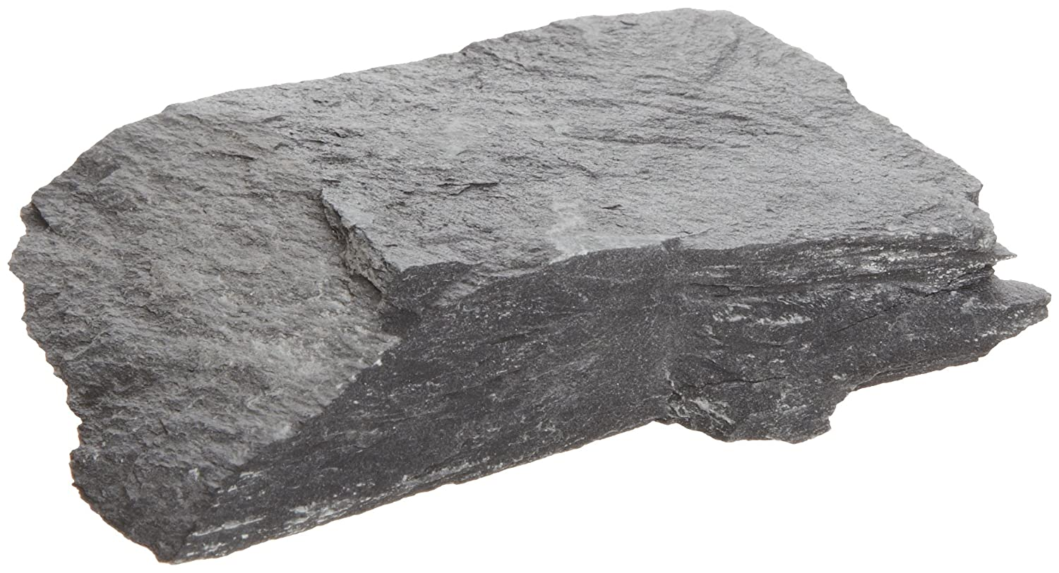 Gray Rock1kgScience Educational Black American Slate Metamorphic EHeD2W9IY
