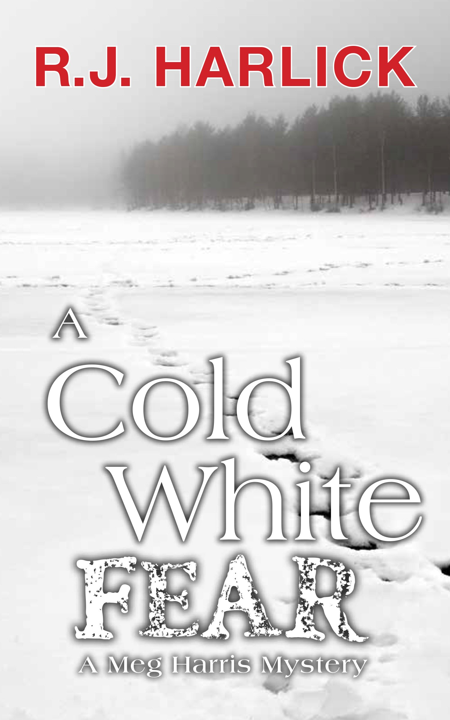 Read Online A Cold White Fear: A Meg Harris Mystery PDF