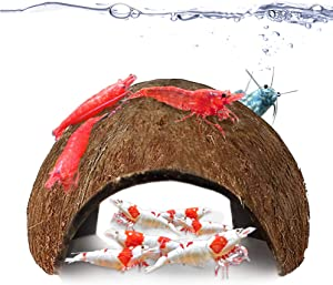 JOR Coco Shrimp Cave