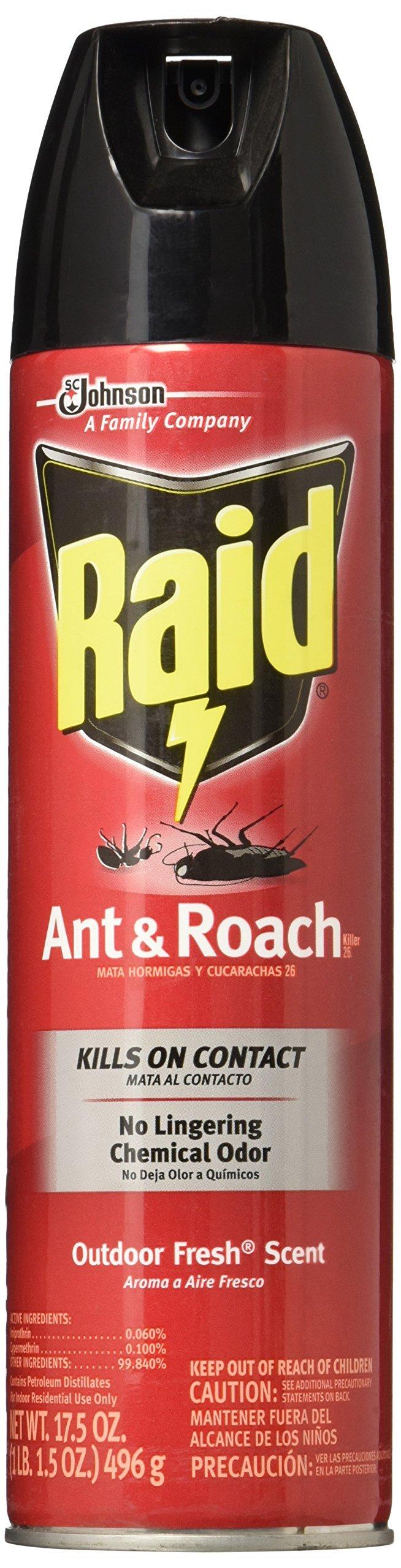 Raid Ant & Roach Killer Insecticide Spray-Outdoor Fresh - 17.5 oz