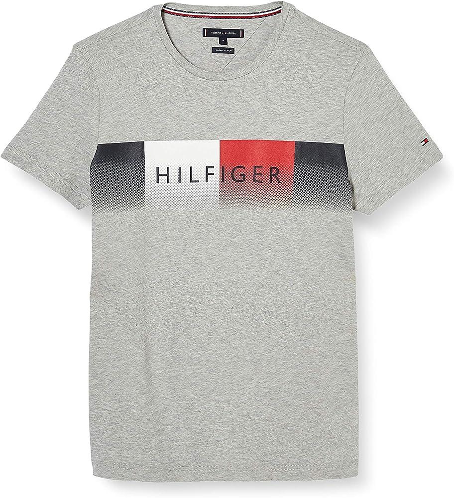 Tommy Hilfiger TH Cool Hilfiger Fade tee Camisa, Grey, X-Small para Hombre: Amazon.es: Ropa y accesorios
