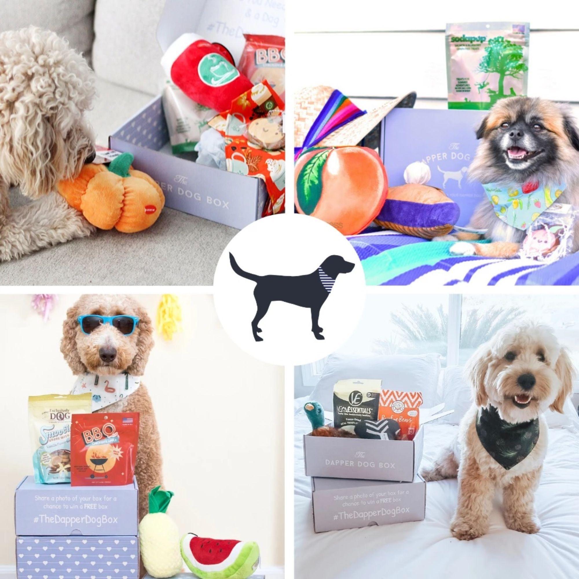 The Dapper Dog Subscription Box
