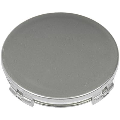Dorman 909-120 Silver Painted Wheel Center Cap: Automotive