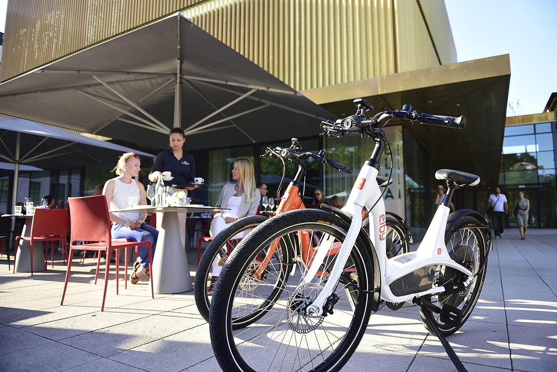 best electric bike consumer report