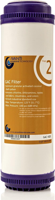 Avanti 2-Stage 1 Pack 10-Inch GAC Filter