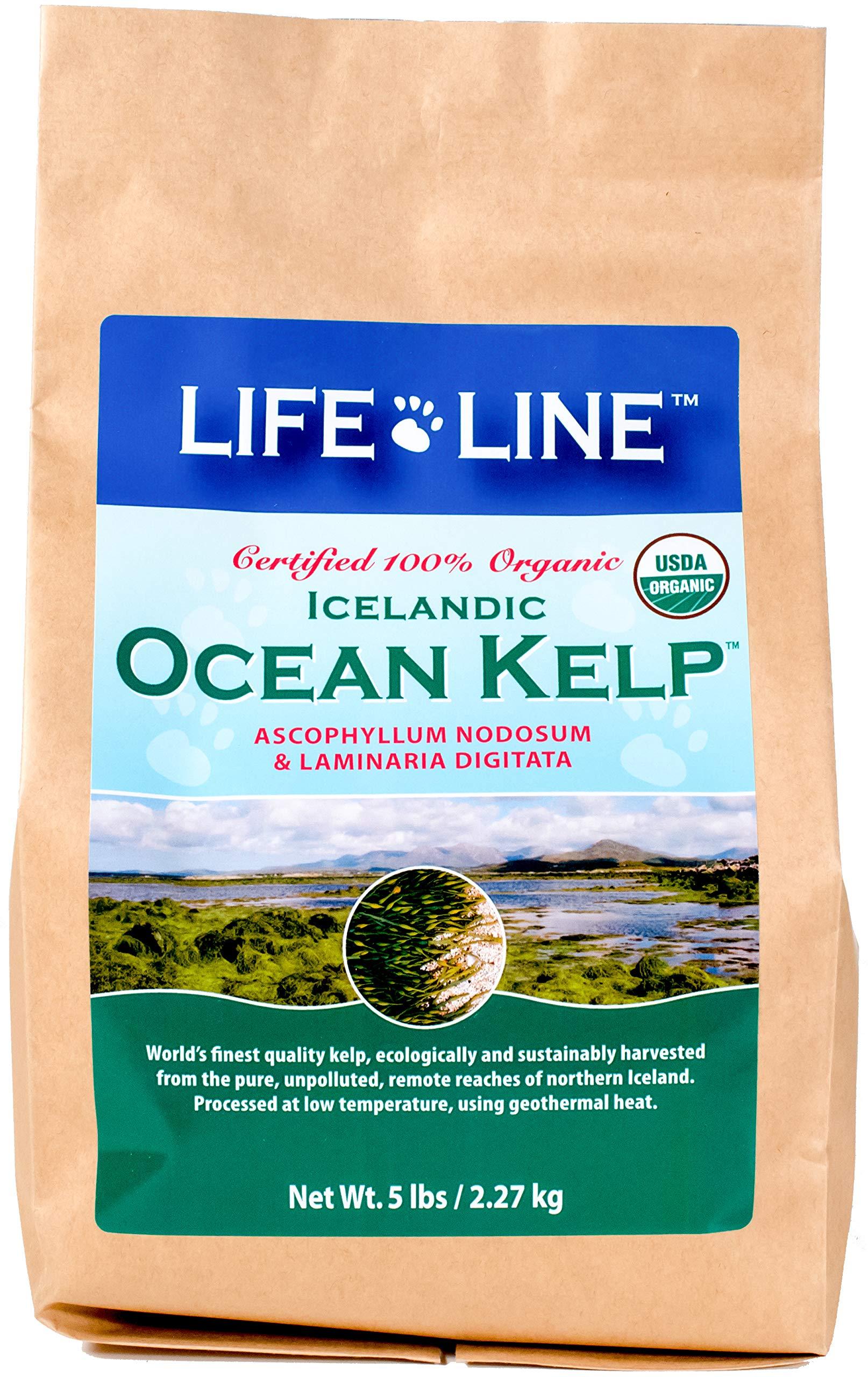 Life Line Pet Nutrition Organic Ocean Kelp Supplement for Skin & Coat, Digestion, Teeth & Gums in Dogs & Cats, 5-Pound by Life Line Pet Nutrition