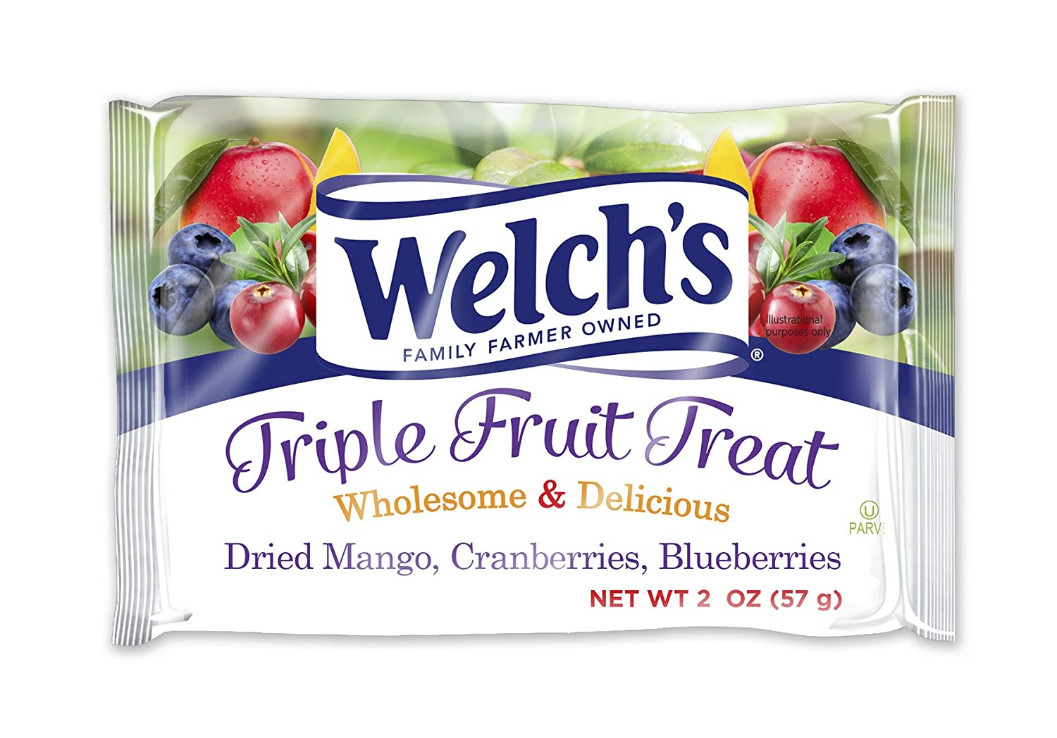 Amazon.com: Welch\'s Dried Fruit Single Serve Pouches - 12 Pack ...