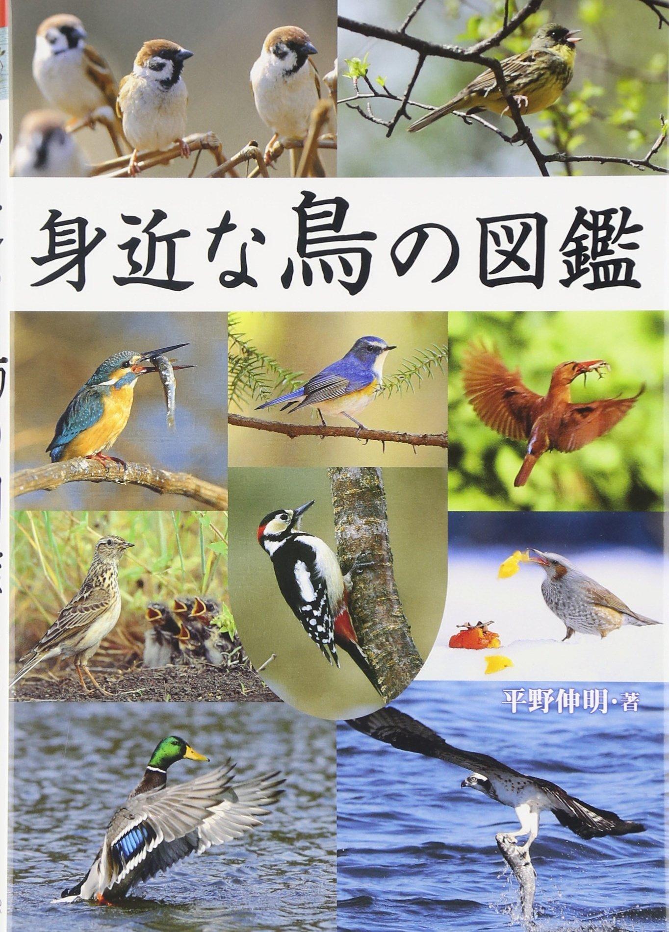 図鑑 鳥類