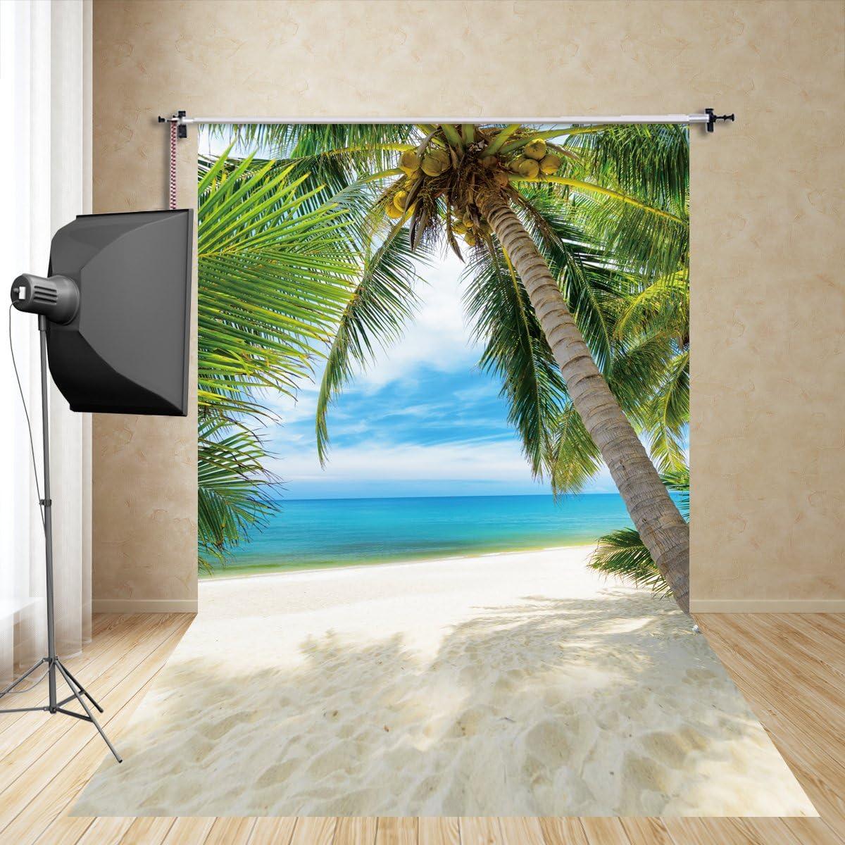Fivan En 150 300 Cm Hawaii Coconut Foto Hintergründe Kamera