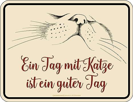 Rahmenlos - Placa Decorativa de Chapa para el Propietario de Gatos: un día con Gato