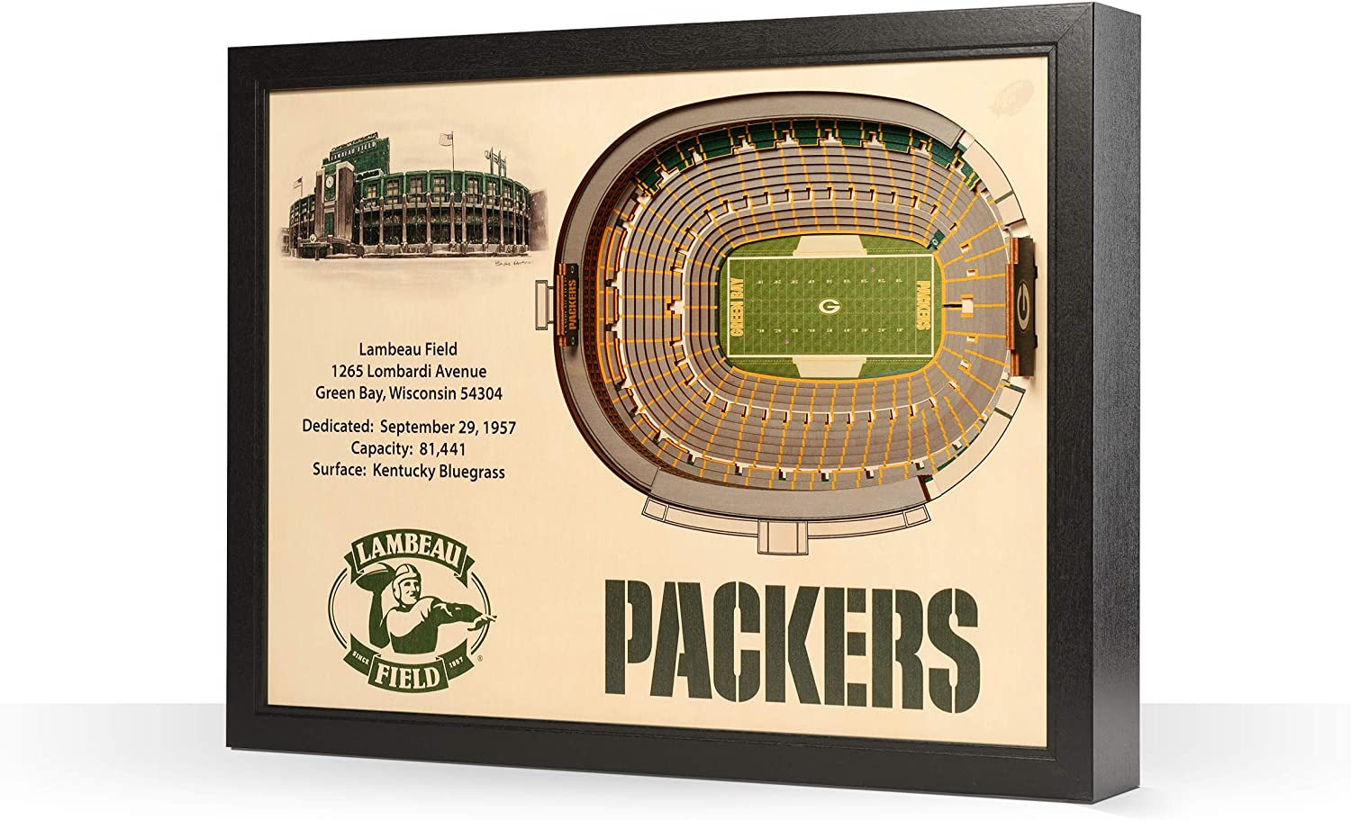 YouTheFan NFL 25-Layer StadiumViews Wall Art