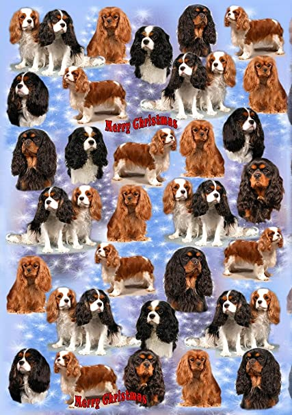 Dachshund Wrapping Paper By Starprint