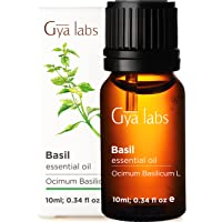 Gya Labs Basil Essential Oil - Mind Concentrator For Better Focus and Sore Free Body 10ml – 100 Pure Natural Therapeutic…