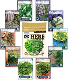 Culinary Herb Seed Collection   100% NON GMO, Easy To Grow Heirloom