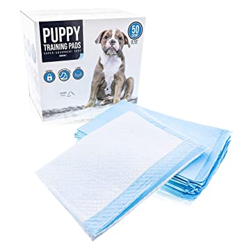 Ryher Toallitas absorbentes empapadores para Perros - Absorbe hasta 1200ml, Pack De 50: Amazon.es: Productos para mascotas