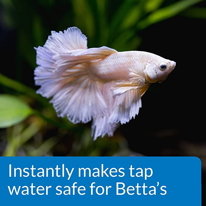 API Betta Acondicionador de Agua Betta Peces Agua Dulce Acuario Agua Acondicionado 1.7-Ounce Botella: Amazon.es: Productos para mascotas