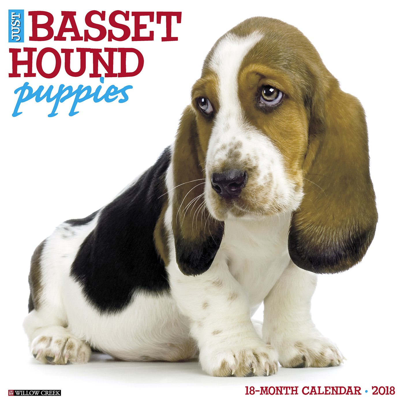 Just Basset Hound Puppies 2018 Wall Calendar (Dog Breed Calendar ...