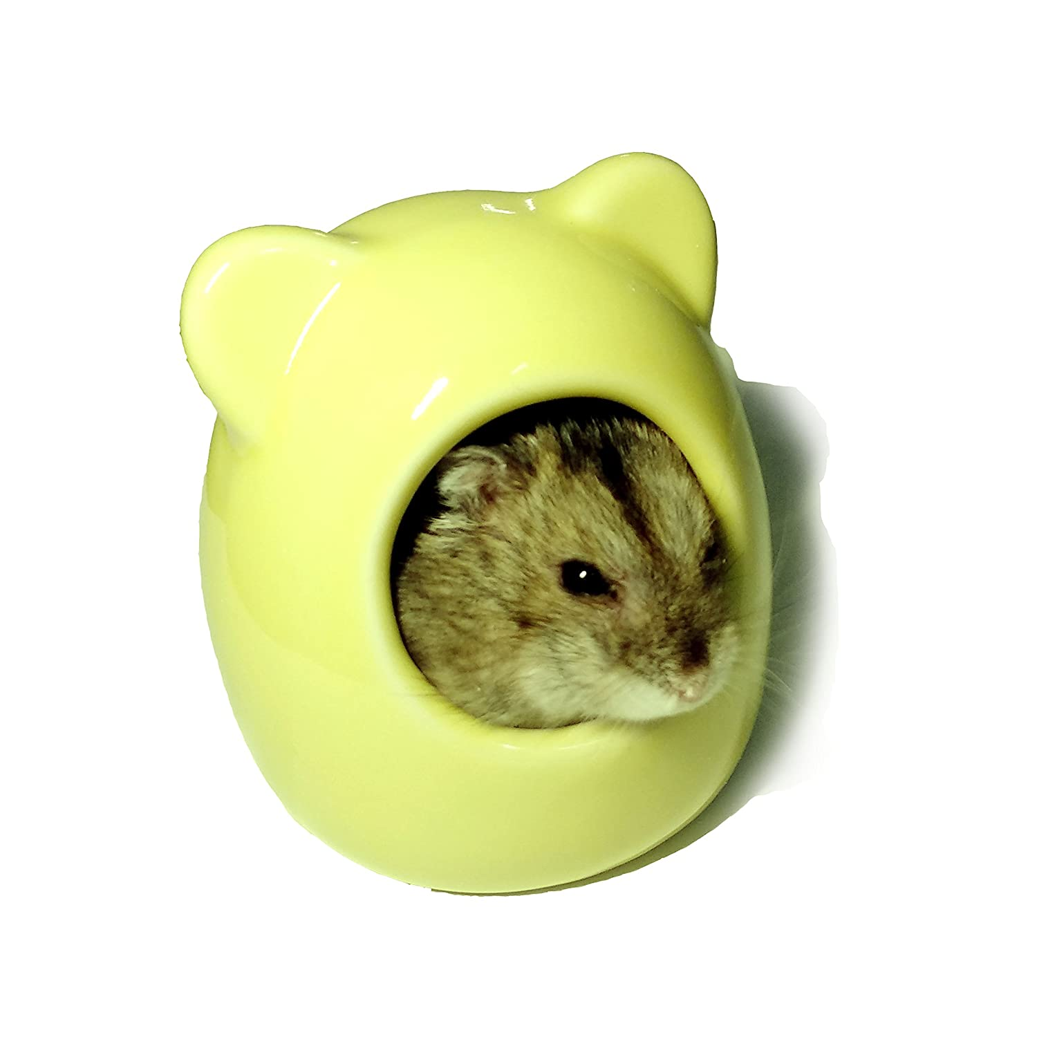 Sometime Summer Chinaware Hamster House, Ceramic Critter Bath for Small Pet