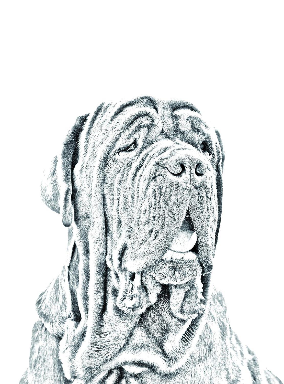 Oval Grabstein aus Keramikfliesen mit Einem Bild eines Hundes Mastino Napoletano ArtDog Ltd