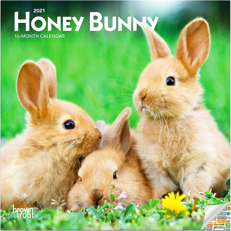 Honey Bunny Calendar 2021 Bundle - Deluxe 2021 Bunnies Mini Calendar with Over 100 Calendar Stickers (Farm Animal Gifts, Office Supplies)