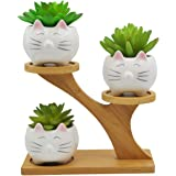 3 PCS Cute Animal Cat Shaped Ceramic Succulent Cactus Flower Pots with 3 Tier Bamboo Treetop Stand (Plant Not Included)