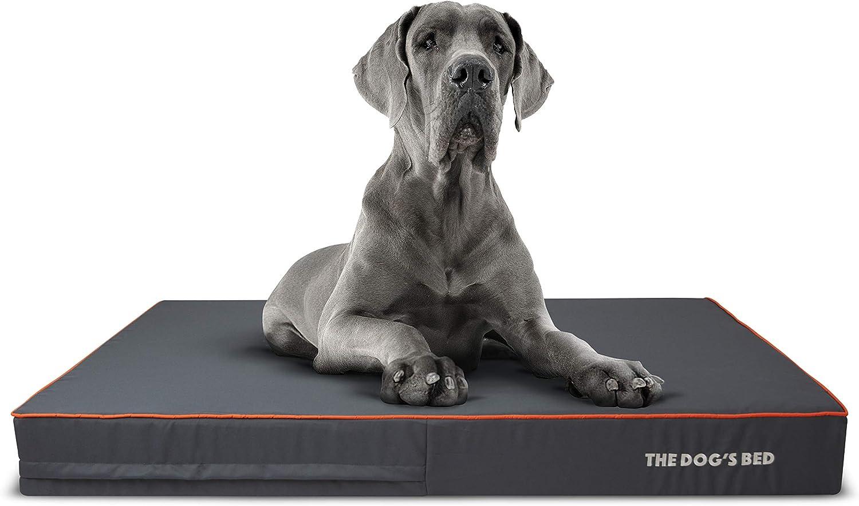 The Dog's Bed Orthopaedic Dog Bed XXL Orange 137x91cm, Premium Waterproof Memory Foam Dog Bed
