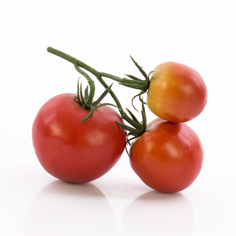 Grappolo di pomodori decorativi MEGGY, 3 frutti, rosso - Pomodori artificiali / Verdura finta - artplants