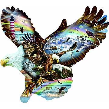 SunsOut Eagle Eye