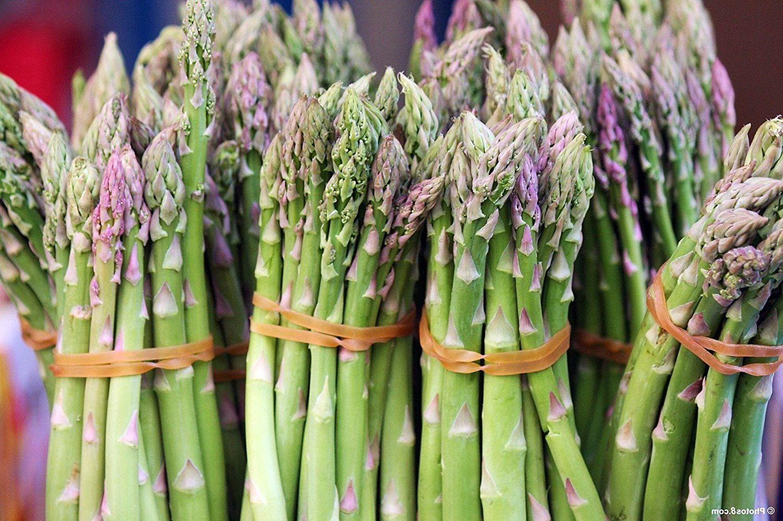 10 Mary Washington Improved Asparagus Roots - Heirloom Variety/Superior Flavor