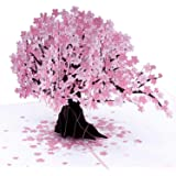 Paper Love Cherry Blossom Pop Up Card, 3D Popup Greeting Cards, for Mothers Day, Spring, Birthday, Wedding, Anniversary, Thank You, Get Well, All Occasion