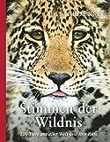 Stimmen der Wildnis: 100 Tiere aus aller Welt und ihre Rufe