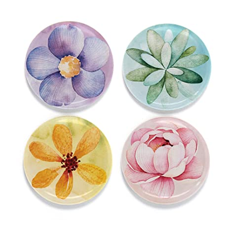 Amazon.com: buttonsmith Art Imán para nevera Set, Fine ...