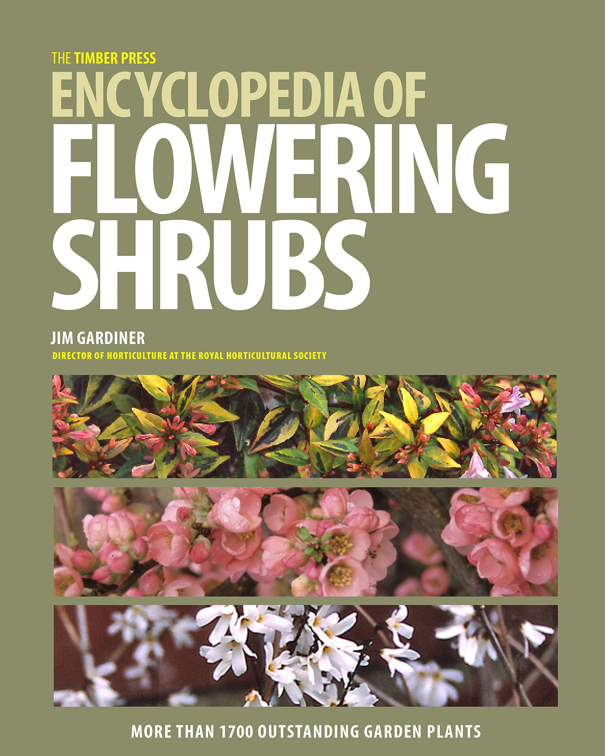 The Timber Press Encyclopedia Of Flowering Shrubs Jim Gardiner