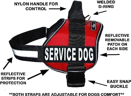 Amazon.com : Doggie Stylz Dog Harness