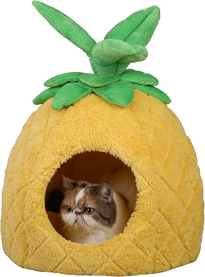 Pineapple Cat Bed