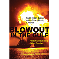 Blowout in the Gulf: The BP Oil Spill Disaster and the Future of Energy in America (The MIT Press)