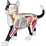 青島文化教材社 スカイネット 立体パズル 4DVISION 動物解剖 No.29 猫 解剖モデル 黒/白